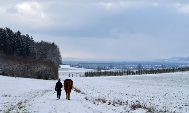 winter_reitwege
